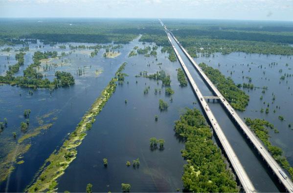 Мост Мэнчек Свамп