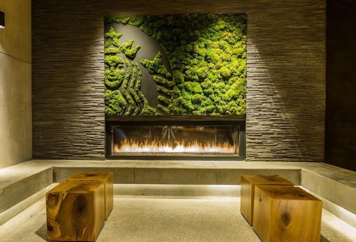 Вертикальное озеленение в офисах – особенности и влияние на сотрудников